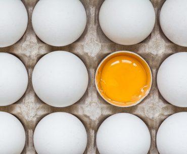 一周回って朝の新習慣「朝卵」